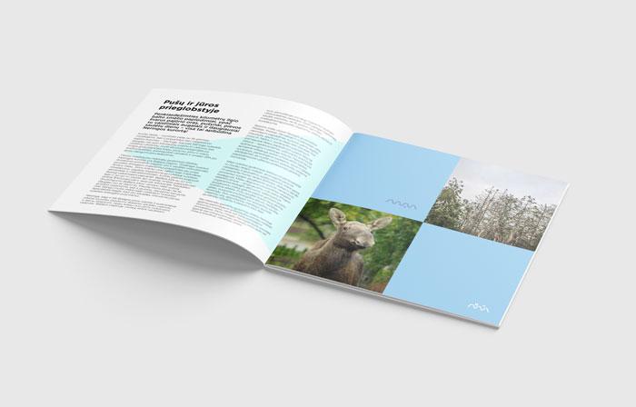 Agila-bukleto-dizainas-klaipedos-dizaino-agentura-balta-ideja-4